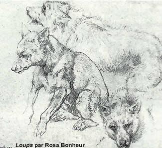 dissertation sur la mort du loup DISSERTITIONS POPULAIRES